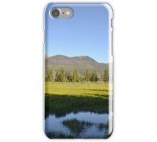 Great moose habitat iPhone Case/Skin