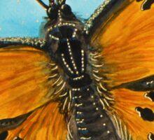 Grey Comma Butterfly Sticker