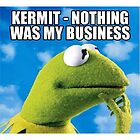 Kermit - Nothing Was My Business by NinetyFive95