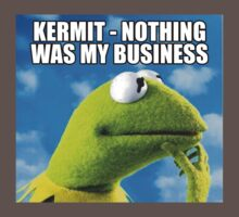 Kermit - Nothing Was My Business Kids Clothes