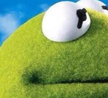 Kermit - Nothing Was My Business Sticker
