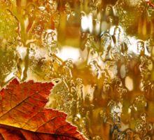 Autumn Maple Leaves Sticker