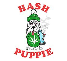 Hash Puppie Photographic Print