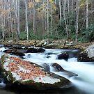 Let the River Flow... by Terri~Lynn Bealle