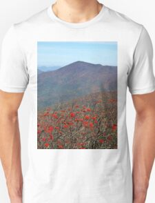View from Craggy Dome Mountain T-Shirt