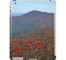 View from Craggy Dome Mountain iPad Case/Skin