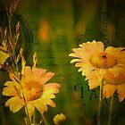 Les Fleurs by vigor