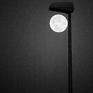 Moon Light by Paul Pasco