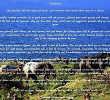 Desiderata #2 by aidan  moran