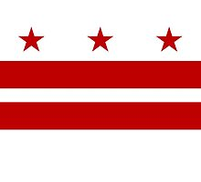 Washington DC Flag by Carolina Swagger