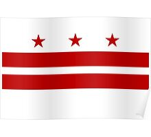 Washington DC Flag Poster