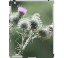 nature photography iPad Case/Skin