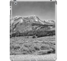 Ruby Range in Black and White #3 iPad Case/Skin
