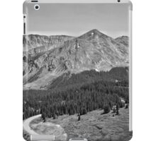 Cottonwood Pass #2 iPad Case/Skin