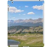 Cottonwood Pass #4 iPad Case/Skin