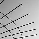 Skyward.  by Michael Stocks