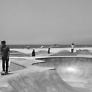 The Bowl.  by Michael Stocks