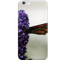 Monarch 008 iPhone Case/Skin