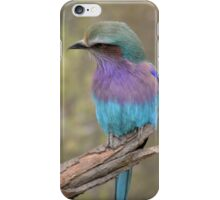 Fabulous Colours iPhone Case/Skin