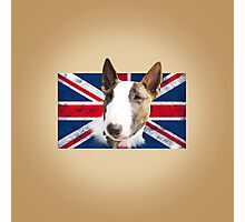 Bull Terrier BETTY Bullterrier UK grunge FLAG // creme Photographic Print