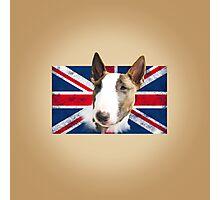 Bull Terrier BETTY Bullterrier UK grunge FLAG // creme Photographic Print