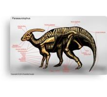 Parasaurolophus Skeleton Study Canvas Print