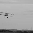 'Into the Wind' - Hawker Fury @ Duxford by PathfinderMedia