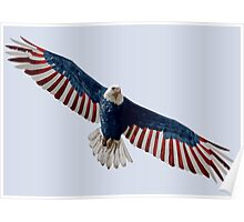 American Flag Bald Eagle Poster