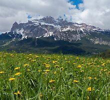 Dolomites by Nigel Donald