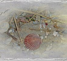 Seashells and Sand by MotherNature