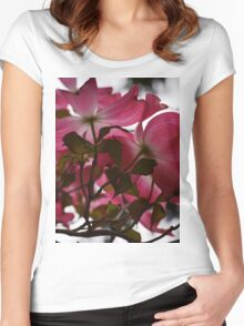 Dogwood Blossoms Women's Fitted Scoop T-Shirt