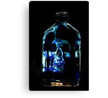 The Blue Bottle Canvas Print