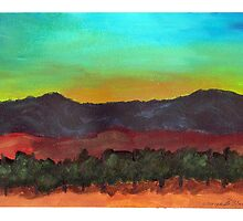 Temecula Sunset by Michelle Nabours