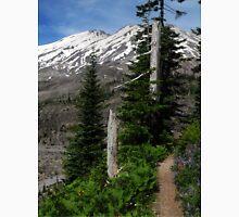 Ape Canyon Trail - Mt St Helens Unisex T-Shirt
