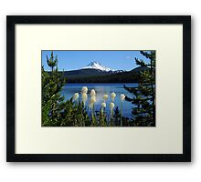 Mt Jefferson, Olallie Lake and beargrass Framed Print