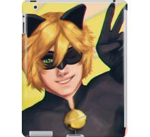 Chat Noir - Miraculous Ladybug iPad Case/Skin
