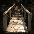 Bridge in Captains Flat/NSW/Australia (2) by Wolf Sverak