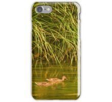 Urban Wildlife Habitat - Los Angeles River 2 iPhone Case/Skin