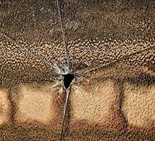 Bullet Hole by Wolf Sverak