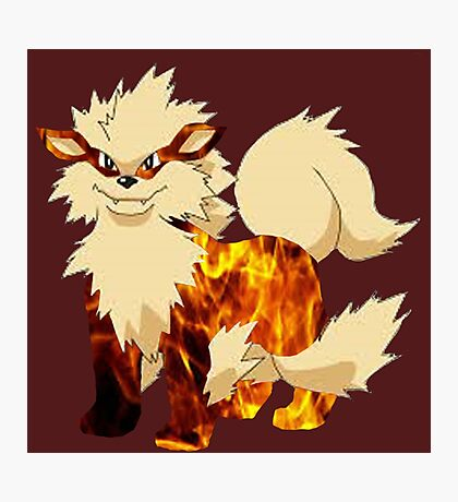 Arcanine-Pokemon Photographic Print