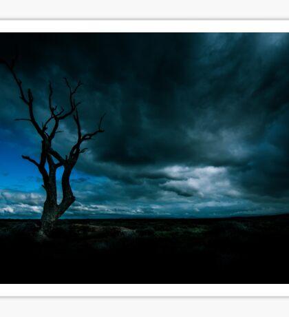 Tree In A Storm Sticker