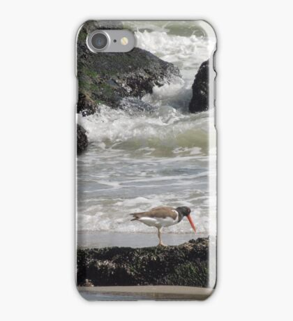 Oyster catcher Low Tide iPhone Case/Skin