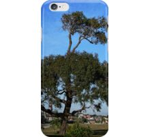 A tree grows on top of a tree iPhone Case/Skin