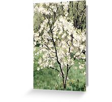 White Layers Greeting Card