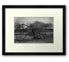 Reflection of ourselves Framed Print