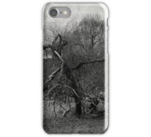 Reflection of ourselves iPhone Case/Skin