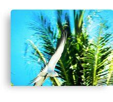 Seabird Flypast Canvas Print