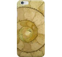 An Ancient Treasure VII iPhone Case/Skin