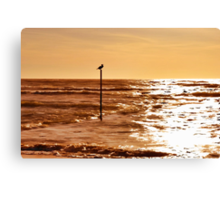 Sky and sea Canvas Print