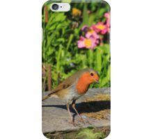 Robin in garden with flowers iPhone Case/Skin